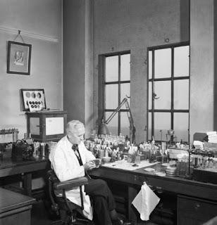 Penemu Penisilin - Alexander Fleming